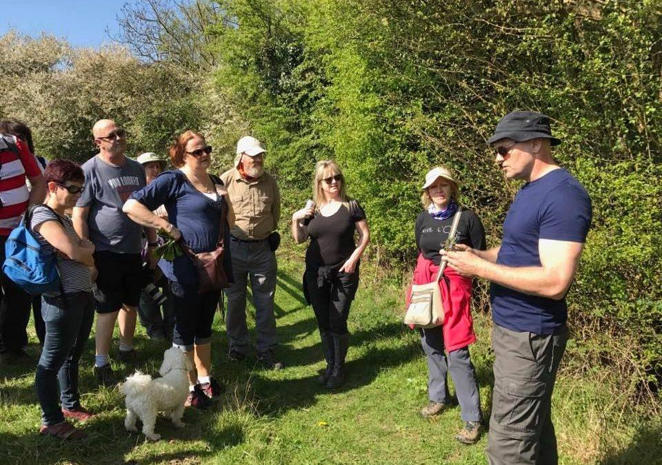 Food For Free – National Trust Guided Walks Along River Wey, Weybridge, Surrey