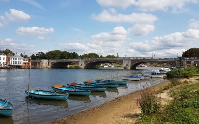 Hampton Court Healthy Walks Including Ferry and Bushy Park