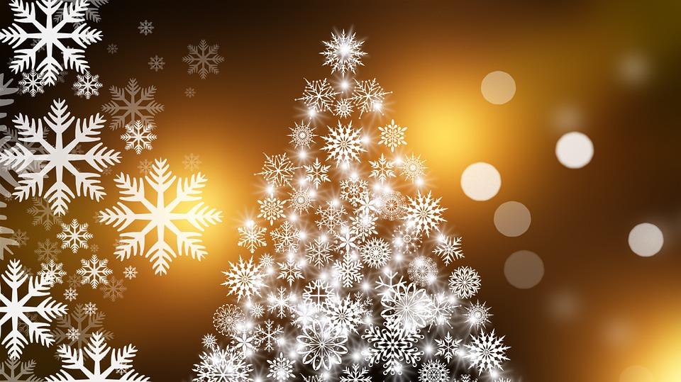 Weybridge Christmas Trees & Lights Fundraising Campaign – Please Help To Make Weybridge Festive This Year