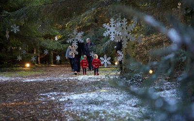 Visit Father Christmas in Santa's Secret Forest! – Magical Experience for Kids in Addlestone Surrey
