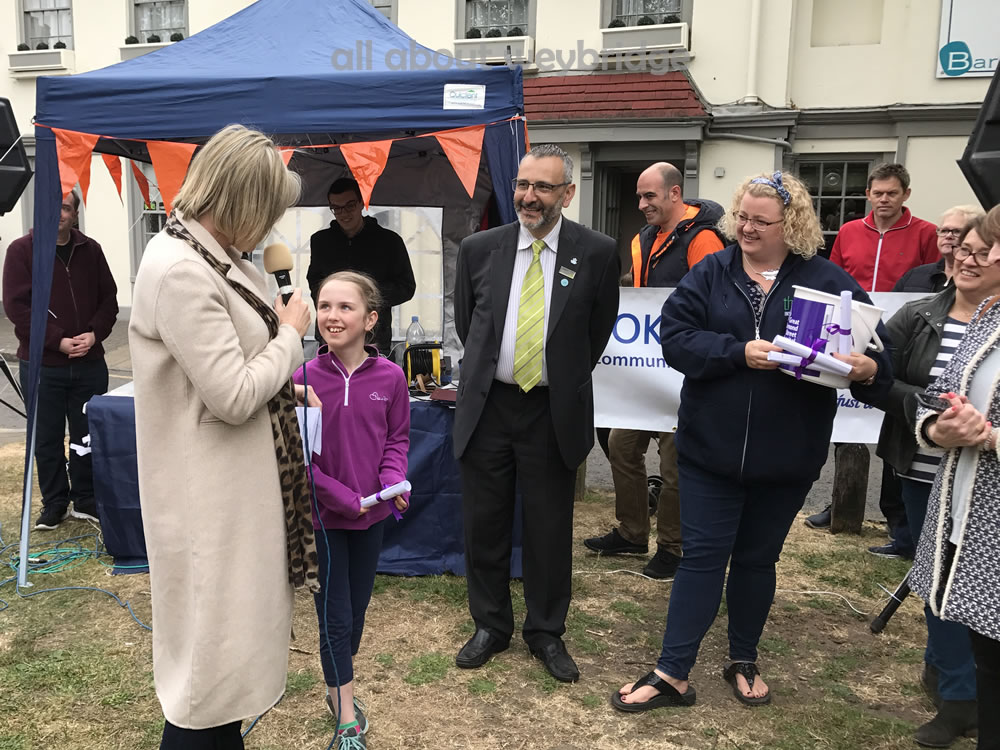 runner-up-prize-children-small-bakescategory-weybridge-cake-off