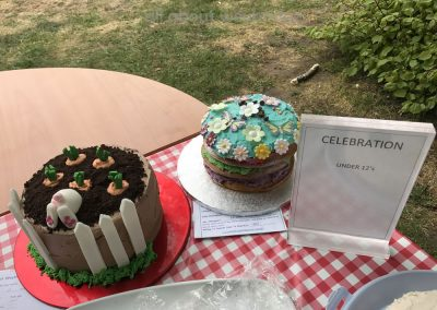 Great Weybridge Cake Off Photos - Celebration Cakes - Children