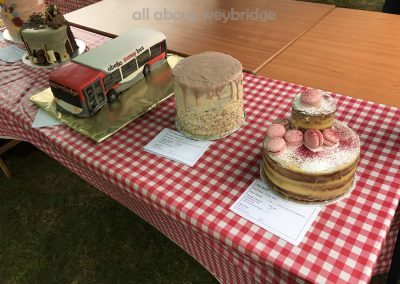 Great Weybridge Cake Off Photos - Celebration Cakes Category - Adult Competition