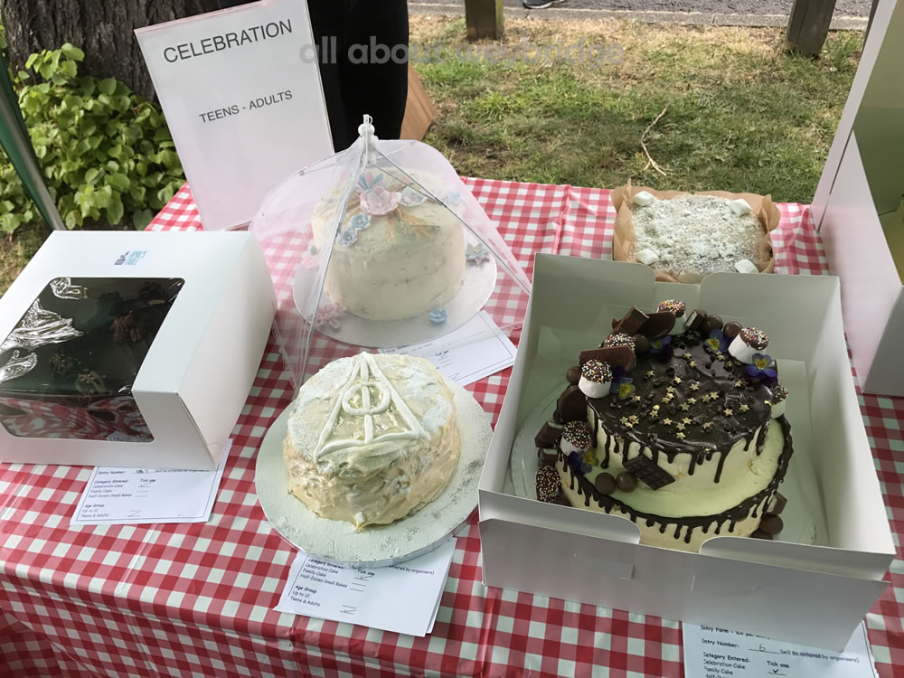 Great Weybridge Cake Off Photos - Celebration Cakes Table - Teenagers & Adults Competition