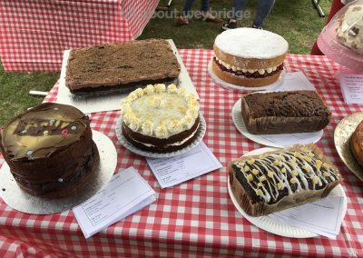 weybridge-cake-off-photos-1000-family-bake-competition-entries