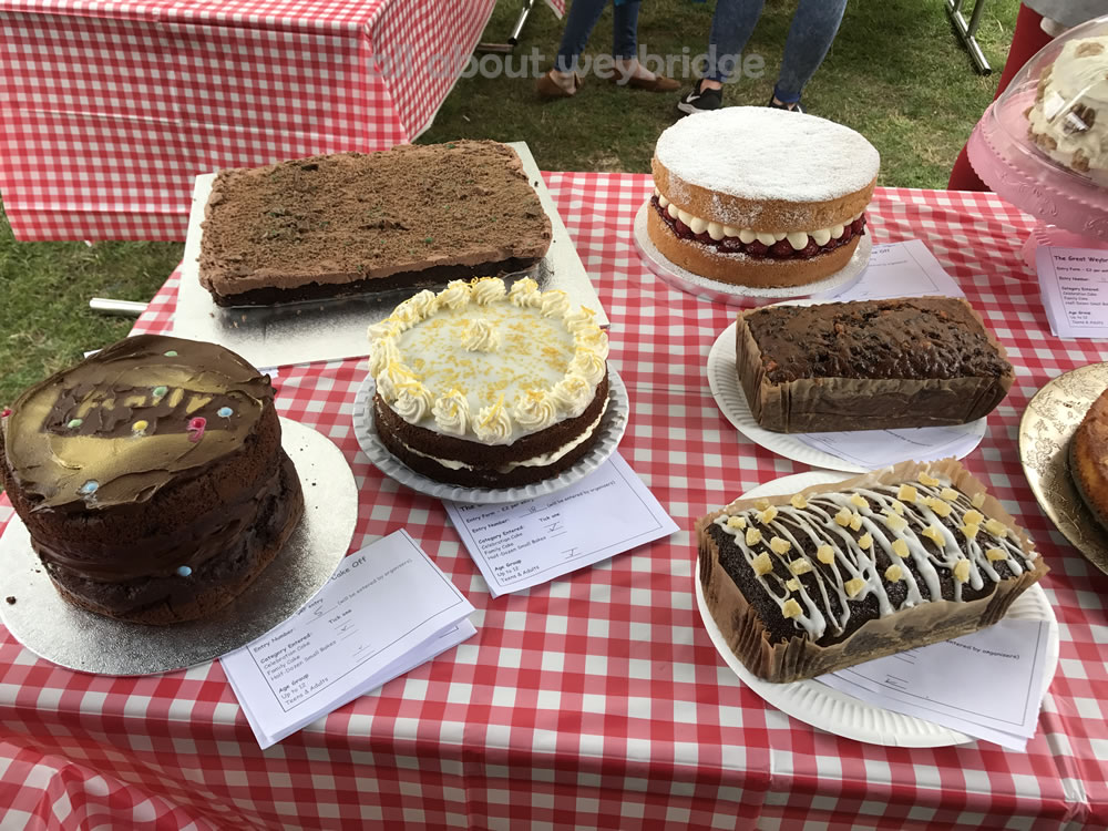 weybridge-cake-off-photos-1000-family-bake-competition-entries