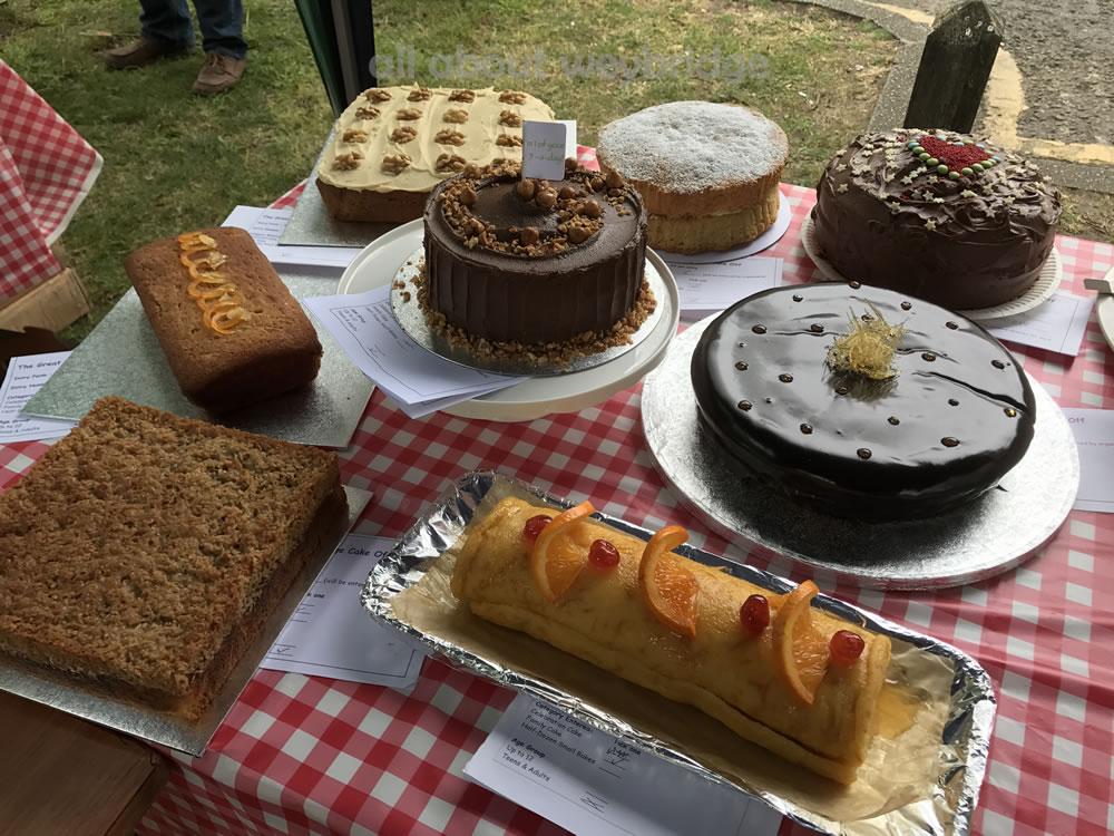 weybridge-cake-off-photos-1000-family-bake-competition-table