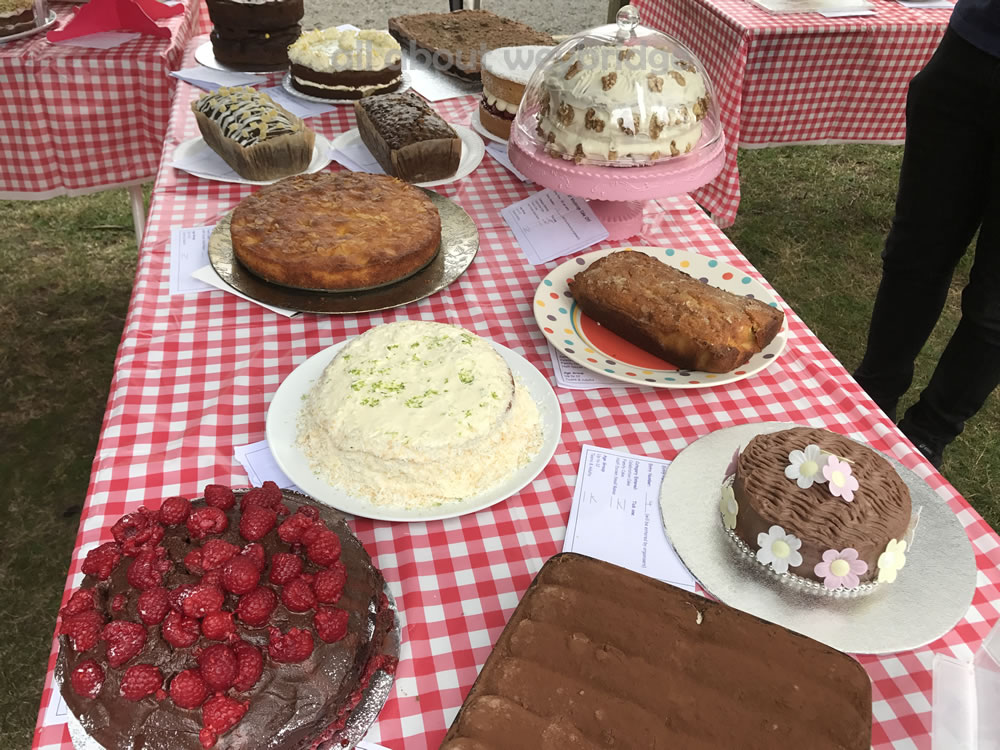 weybridge-cake-off-photos-1000-family-bake-competition