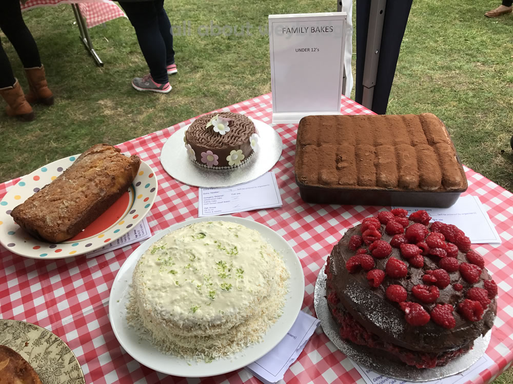 Great Weybridge Cake Off Photos - Family Bakes  - Children Category