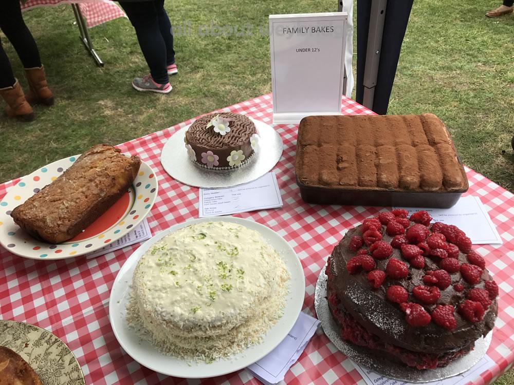 Great Weybridge Cake Off Photos - Family Bakes - Children Category