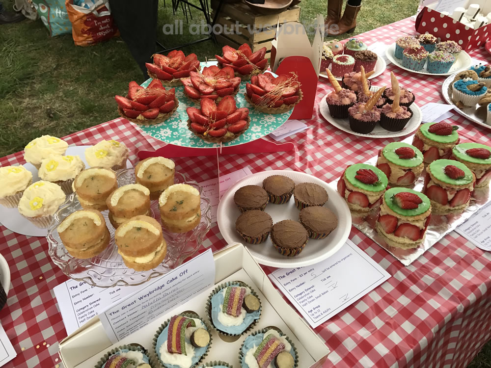 weybridge-cake-off-photos-1000-half-dozen-small-bakes-teenagers-adult-competition