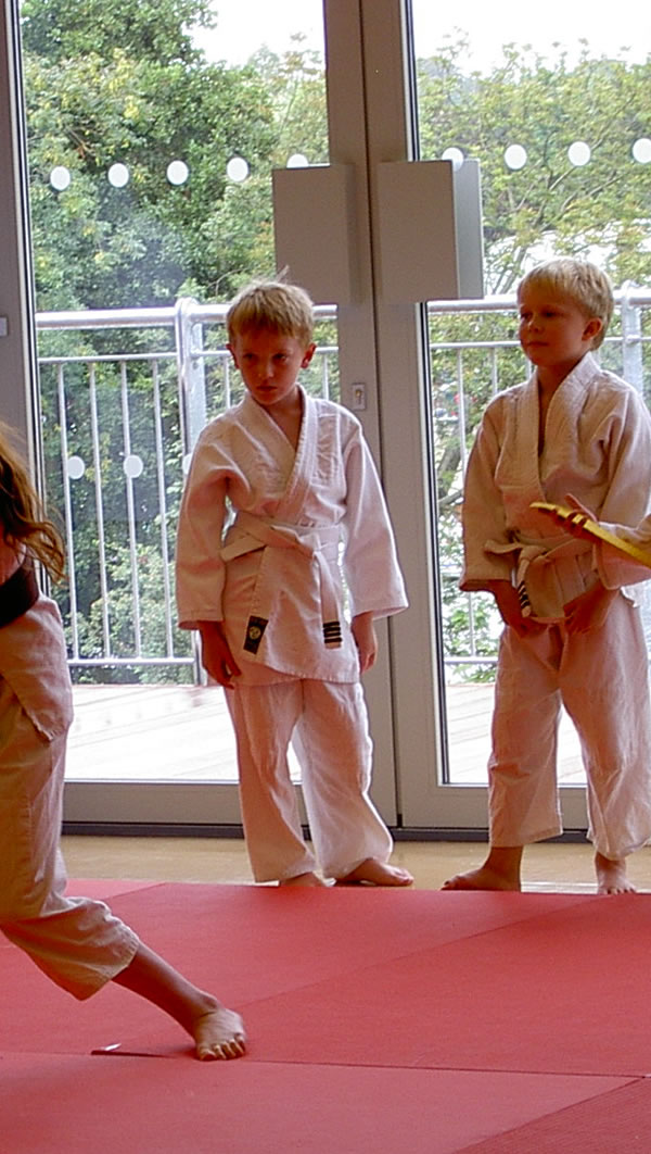 Judo Classes For Boys & Girls At Schools & Sports Centres In Surrey