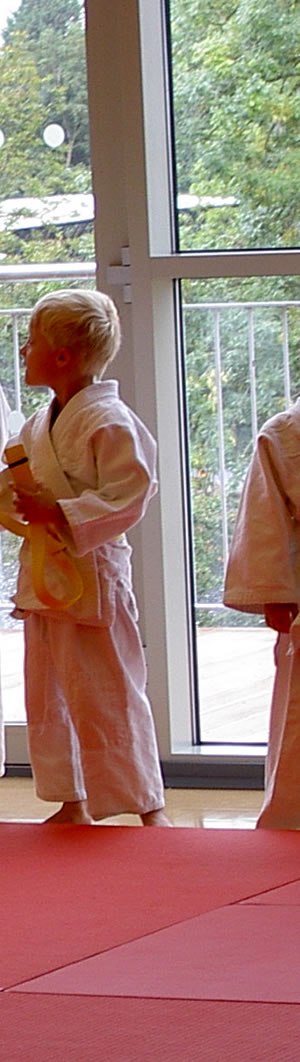 Judo Classes at Elmbridge includeStoke D'Abernon Village Hall Cobham Surrey