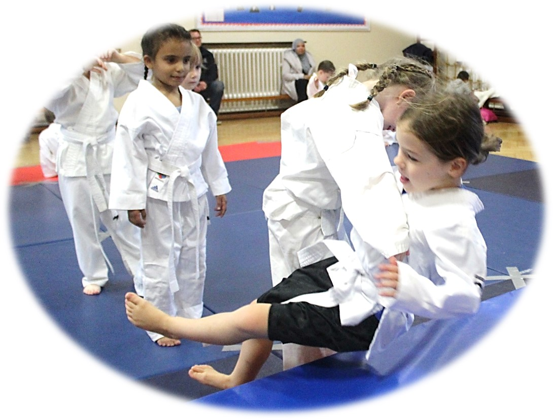 Judo Photo - Class for teenagers and adults at Elmbridge Xcel Sports Centre Walton on Thames on Thursdays