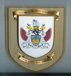 EaRTN Mayors Award