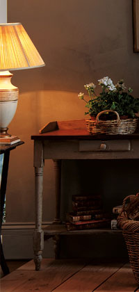 Wood and Gas Stoves For Heating Your Home - Weybridge Surrey Showroom