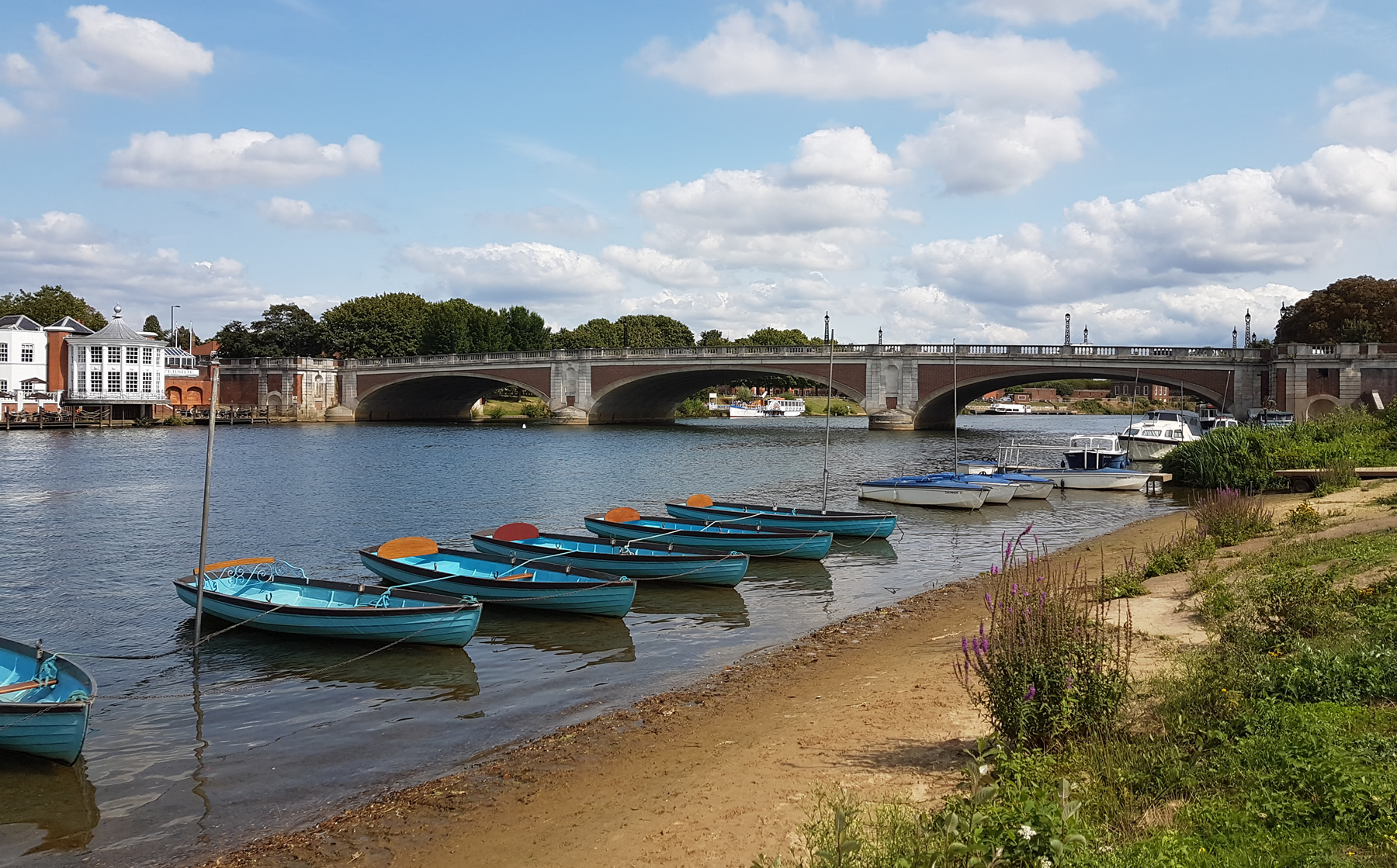 Hampton Court Bridge and blue boats - Elmbridge Healthy Walks