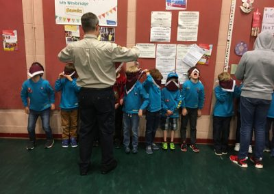 Scouts Beaver Cubs Weybridge Surrey