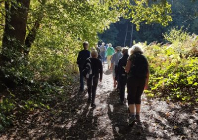 Esher Common Fungi Walk Elmbridge Surrey