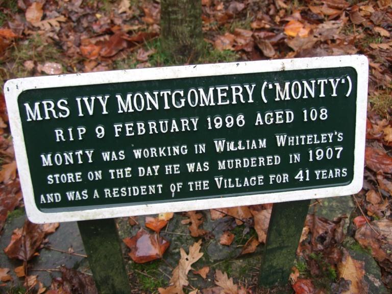 Whiteley Village Hersham Woods Healthy Walk