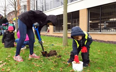 Weybridge In Bloom – Bulb Planting Event A Great Success