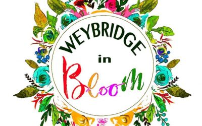 Invitation To First Weybridge in Bloom Group Meeting & Launch