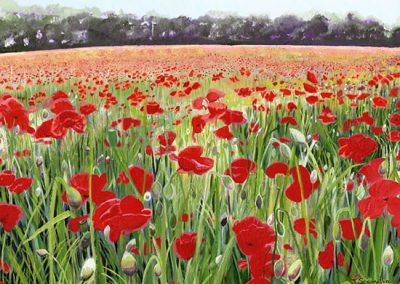 poppy-day-painting
