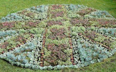 Weybridge In Bloom – Design A Flowerbed Competition