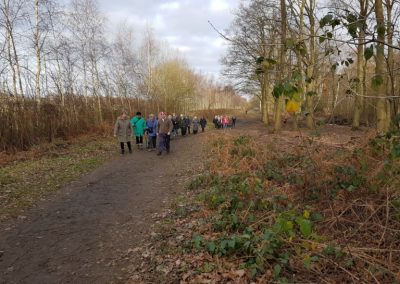 Elmbridge Healthy Walks - New Years Day