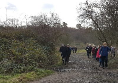 Esher Healthy Walk - New Years Day