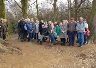 Healthy Walkers - Esher Common on New Years Day