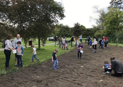 Meadow Planting at Churchfields - Copyright All About Weybridge
