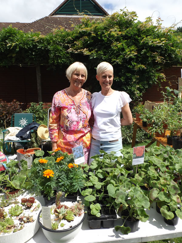 Plants Stall at Summer Fete Esher Surrey