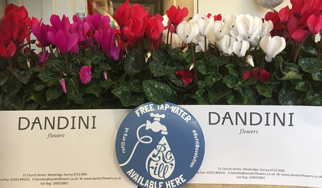 Dandini Flowers Florists - Church Street Weybridge Surrey