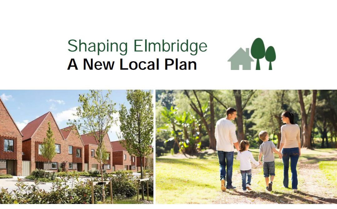 Elmbridge Local Plan should reflect needs after COVID-19 Pandemic