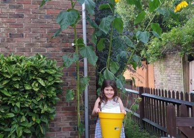 Emily Oreto from St James School - winner of Weybridge Sunflower Competition - Weybridge In Bloom and Allotments Association