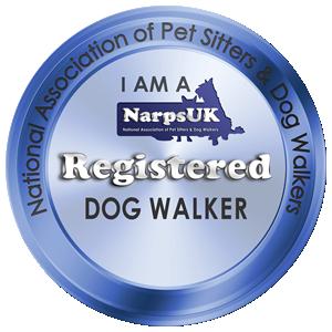 Registered dog walker