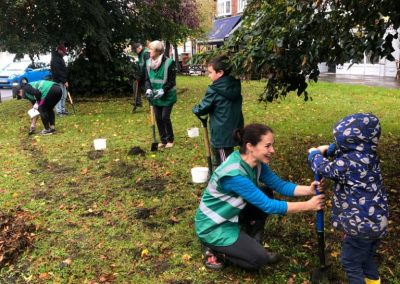 Weybridge In Bloom - Bulb Planting in Weybridge town centre
