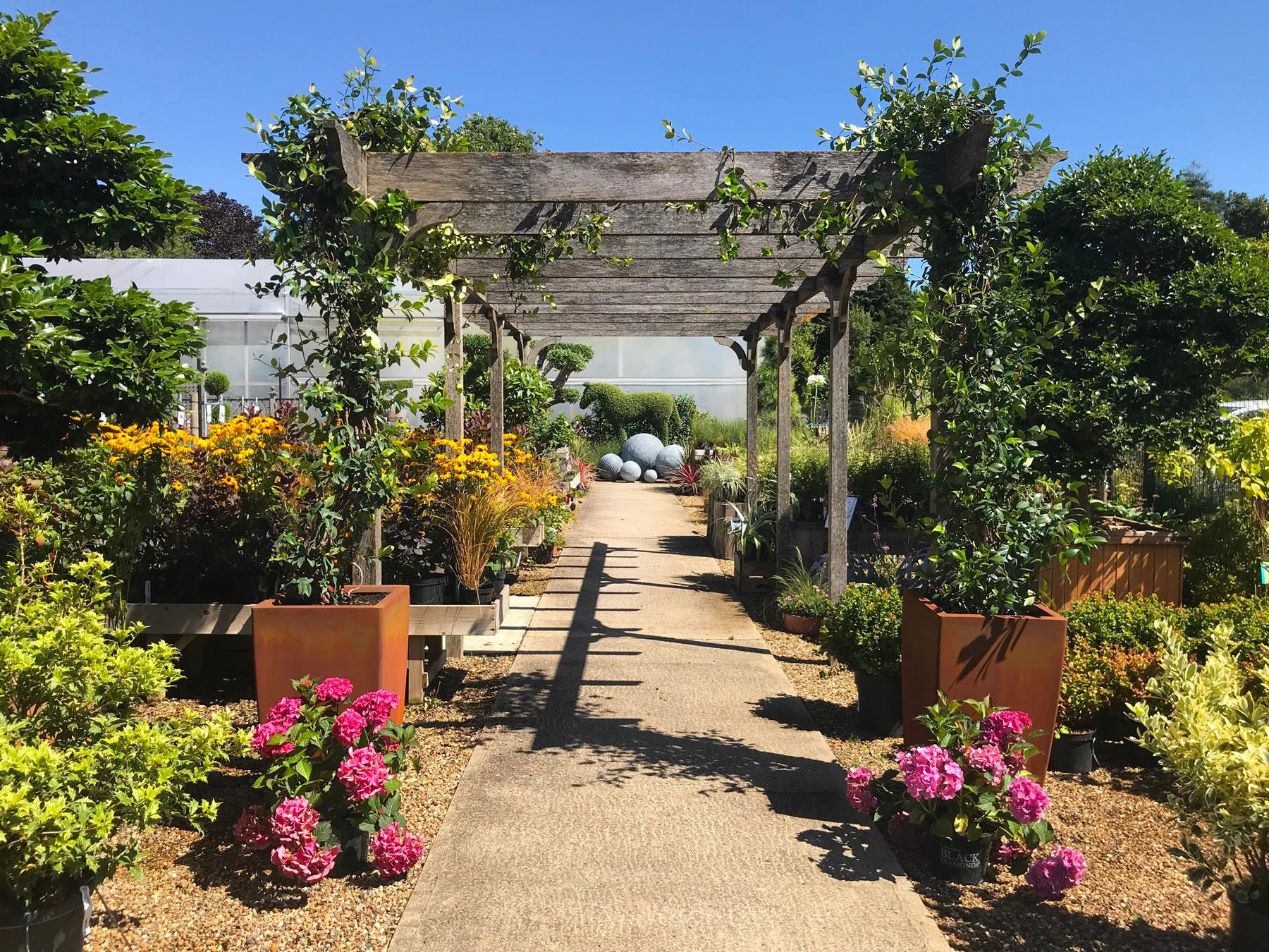Clifton Nurseries - Garden Centre, Woburn Hill, Addlestone, near Weybridge Surrey