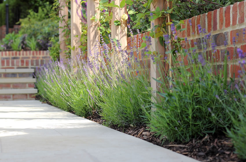 Landscaping Services from Clifton Nurseries Addlestone Weybridge Surrey