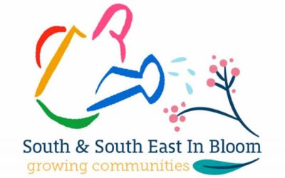 Weybridge Is Planning To Enter South & South East In Bloom Competition