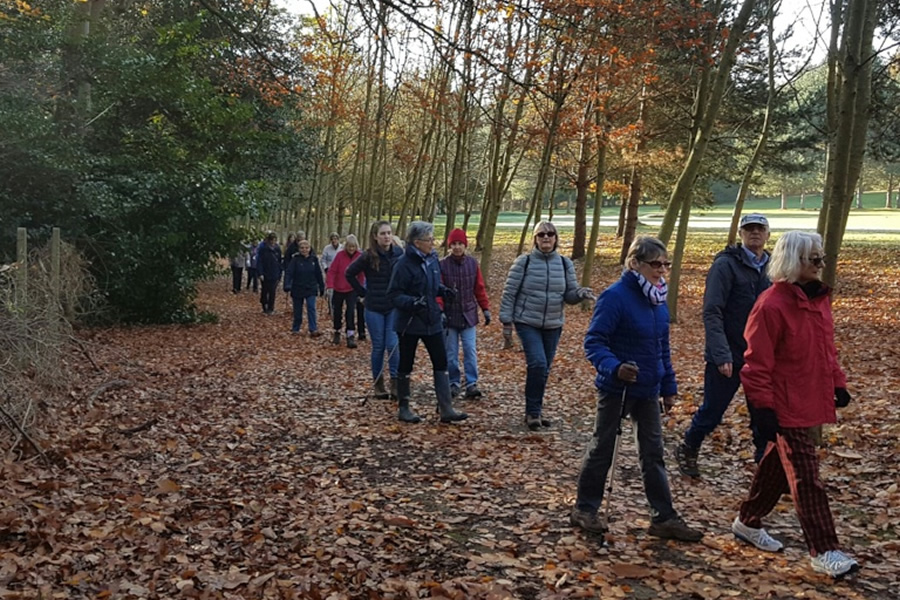 Elmbridge Borough Council Healthy Walks