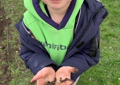 Worms found from digging