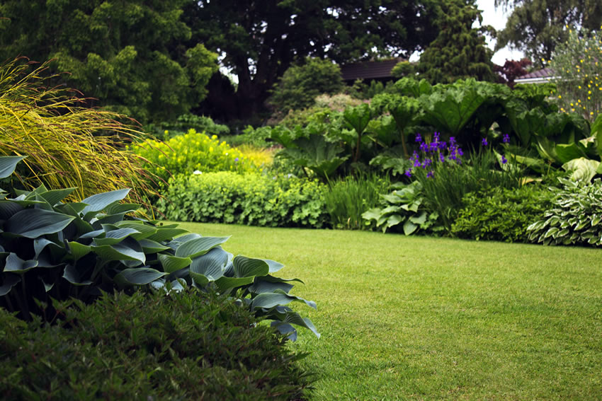 Join the Virtual Garden Show this month and support Princess Alice Hospice