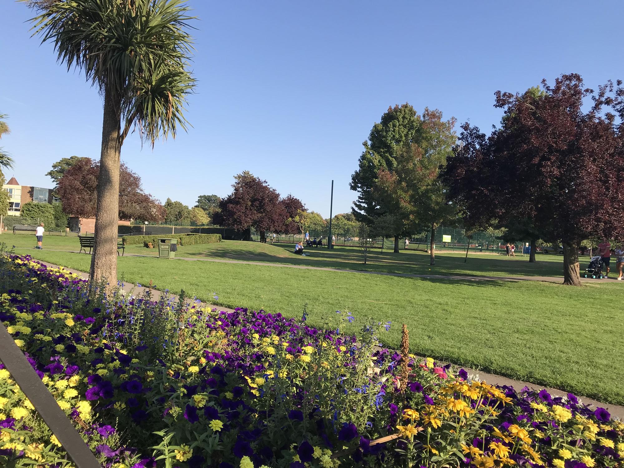 Flower beds and park - Churchfields Recreation Ground Weybridge Elmbridge Surrey