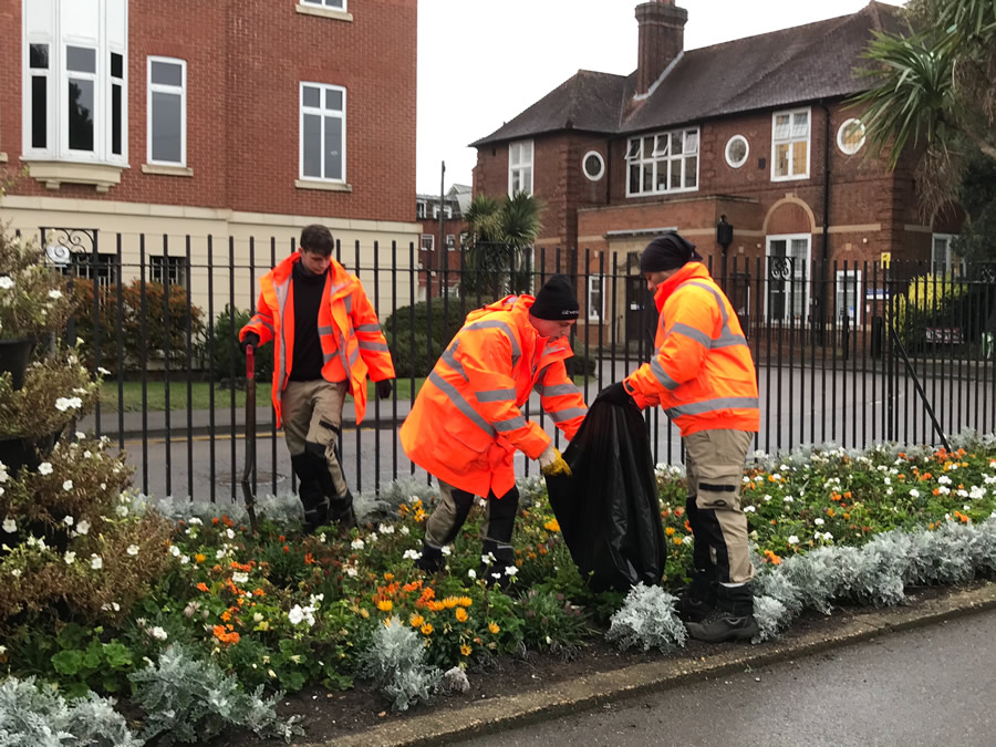 Bedding Plants at Churchfields Recreation Ground Weybridge removed for recycling