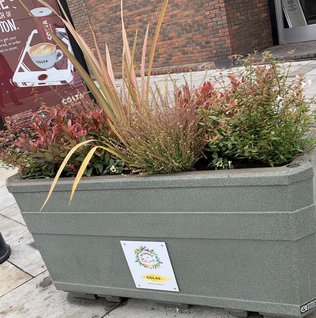 New planters on Weybridge High Street