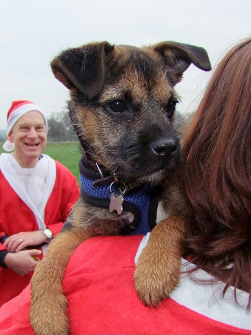 2020 Santa Fun Run with dog - Walking to raise funds for Princess Alice Hospice Esher Elmbridge Surrey