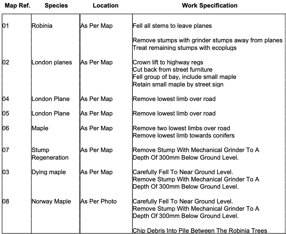 Monument Hill Weybridge Tree Work Details